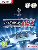 实况足球2014免安装中文硬盘版下载