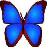 bkViewer照片浏览器绿色版 v5.4c