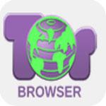 洋葱浏览器 v4.5