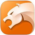 猎豹浏览器ipad版