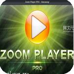 图片缩放工具photozoom pro 5破解版