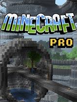 我的世界(MineCraft)V1.0.0正式版汉化版
