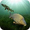 3D模拟钓鱼游戏手机安卓版