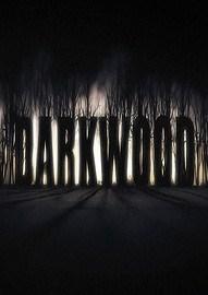 《阴暗森林》免安装正式版下载